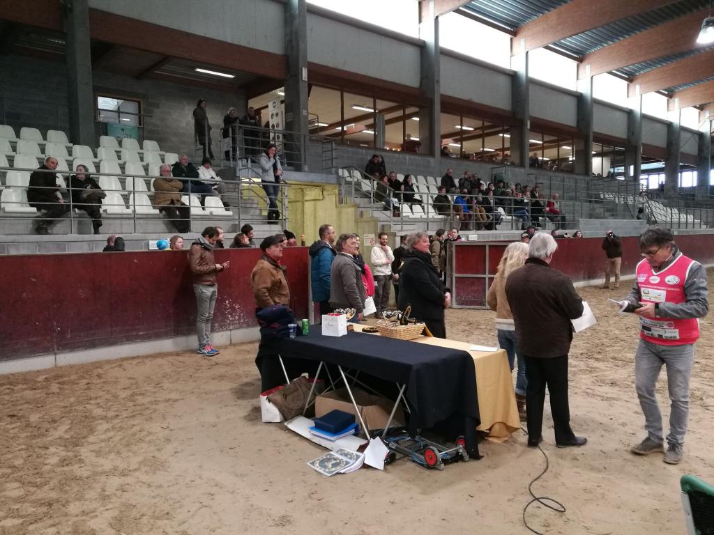 Concours des éleveurs de chevaux d'endurance (Crédit photo : L'équimag)
