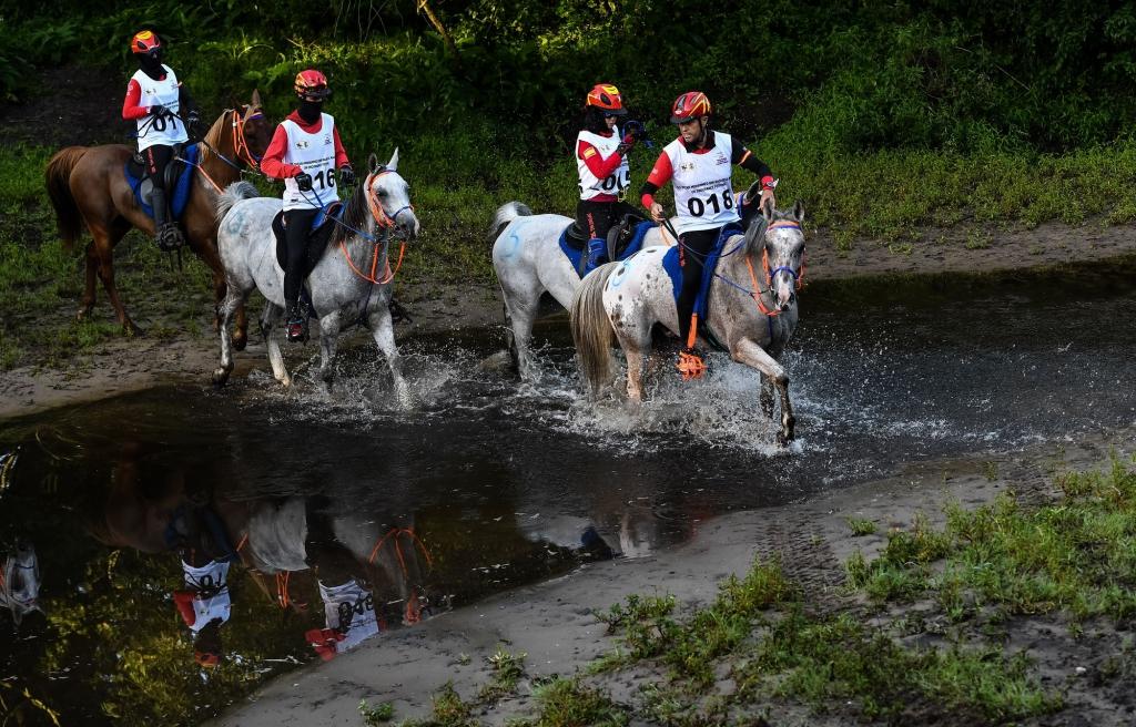 L'équipe espagnole, championne d'Europe à Euston Park (Crédit photo : FEI/Martin Dokoupil)