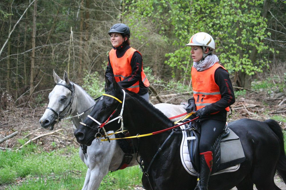 Elisa Arnould et Shetan Al Ondrel EWalRaid et Aurélie Wery et Ourasy de la Fontaine(Crédit photo : L'équimag)