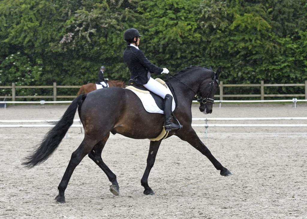 Magali Castellana et Armani de la Roque (Crédit photo : www.nathaliegeerlandt.be)