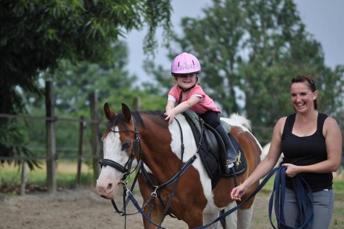 """Surprise est un poney doux avec les enfants (Crédit photo : Page Facebook """"Soutien à Surprise"""")"""