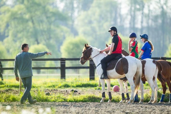 Les cours d'équitation pourront reprendre à certaines conditions (Photo : Christophe Bortels)