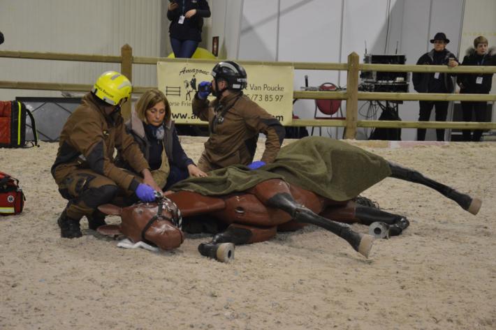 L'Animals Rescue Team en démonstration au WEE. (Crédit : G.Colinet)