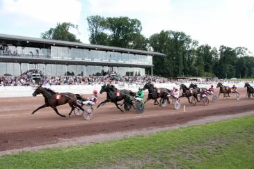 L'Hippodrome de Wallonie (Crédit photo : www.lamia.biz)