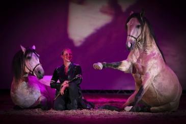 Photo d'illustration (Crédit photo : Wallonie Equestre Event)