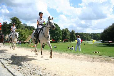 Les Brussels Equestrian Endurance Masters (Crédit photo : L'équimag)