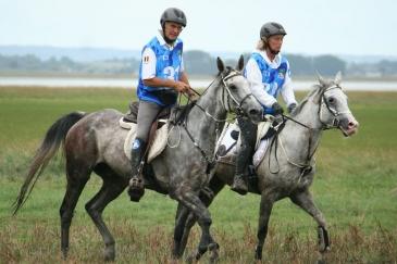 Raoul Ronsmans et Pharouk de la Fageole lors des Jeux équestres mondiaux 2014 (Crédit photo : L'équimag)