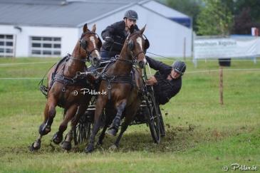 Valentin Henneaux, vainqueur en CAR 2 chevaux (Crédit photo : www.polilux.be)