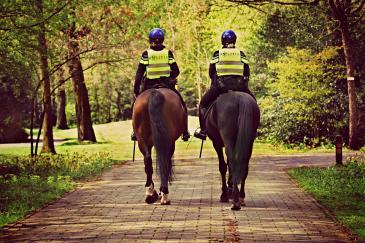 La police montée est à la recherche de nouvelles recrues. (Crédit : Pixabay License)