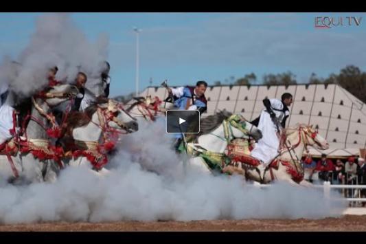 Embedded thumbnail for Visite sur le Morocco Royal Tour et le salon du cheval d'El Jadida