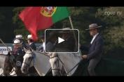 Embedded thumbnail for Le Lusitanien en star à Gesves