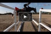 Embedded thumbnail for Aider les jeunes chevaux avec une préparation adaptée